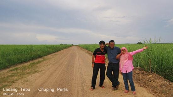 ladang tebu chuping