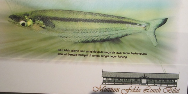 ikan bilut Muzium Felda Lurah Bilut Rakam Kronologi Awal Peneroka