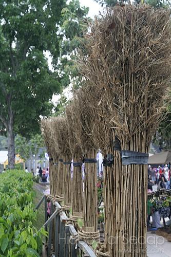 pesta flora putrajaya 2012