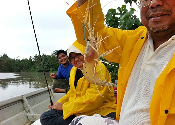 memancing udang galah di sedili