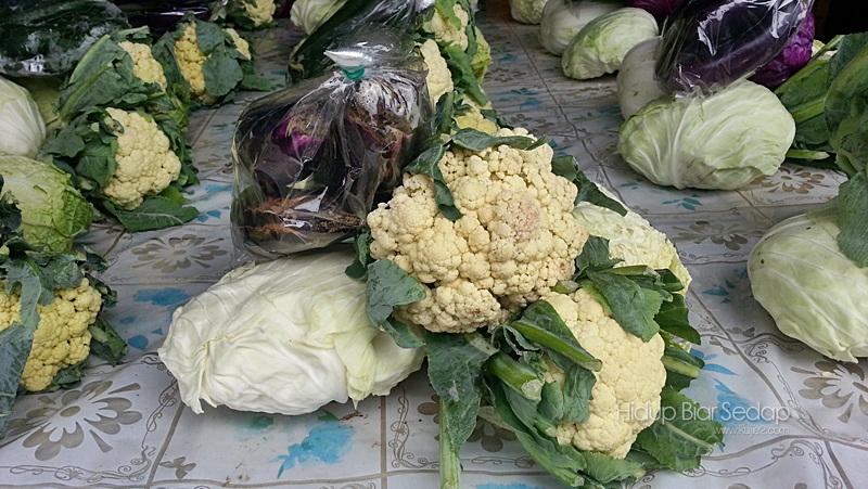 sayuran di cameron highlands
