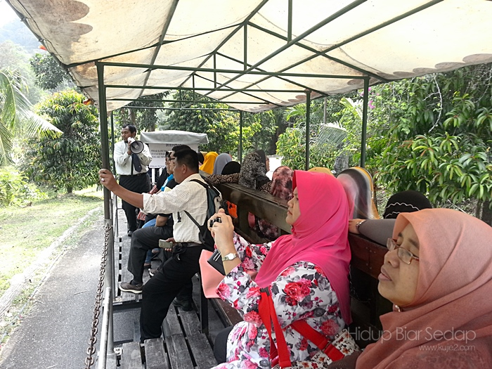 Melawat Ladang Herba Nasuha Spices & Herbs Paradise