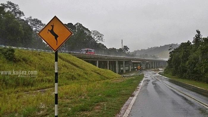 Eco Viaduct Jambatan Hidupan Liar Sungai Yu